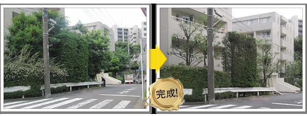マンションの管理-神奈川で造園、エクステリア工事なら鈴木造園にお任せ下さい。造園、植栽、神奈川・東京の庭施工、坪庭・垣根施工