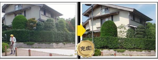 個人庭の管理-神奈川で造園、エクステリア工事なら鈴木造園にお任せ下さい。造園、植栽、神奈川・東京の庭施工、坪庭・垣根施工