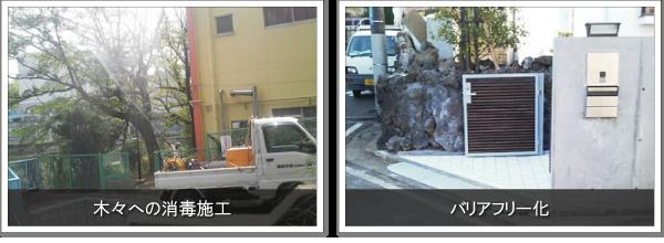 庭の石材の撤去や組み換え施工、木々についた害虫駆除を行います-神奈川で造園、エクステリア工事なら鈴木造園にお任せ下さい。造園、植栽、神奈川・東京の庭施工、坪庭・垣根施工